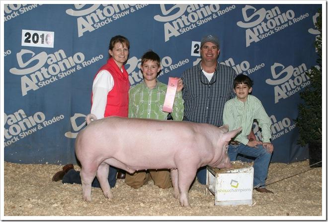 4th place york pig at San Antonio 2010 San Antonio livestock show