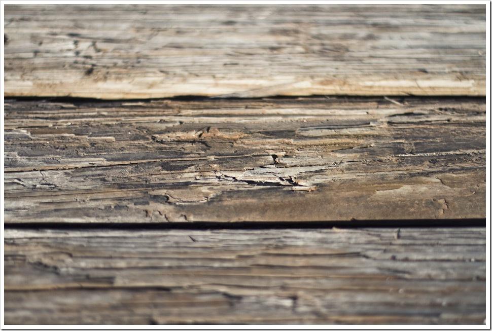 Corpus_Christi_Photographer Project52 barnwood