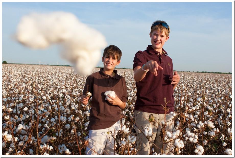 Corpus_Christi_photographer cotton
