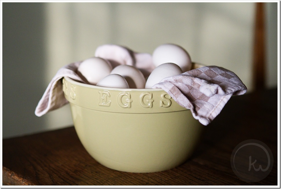 Project 52 Eggs