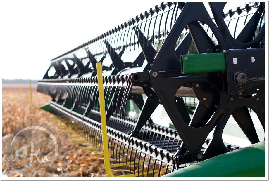 combine-grain-sorghum-Texas