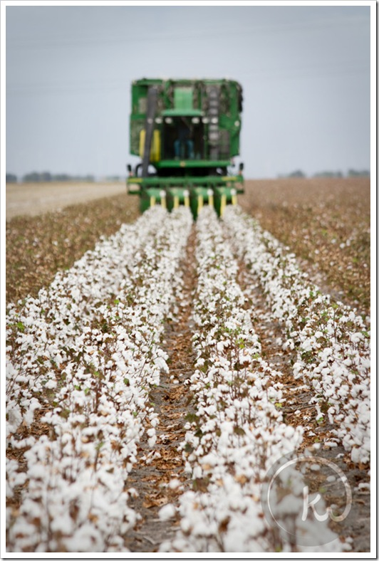John-Deere-Cotton-Picker