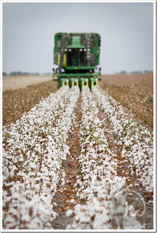 John-Deere-Cotton-Picker
