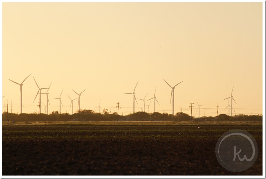 South-Texas-Windmills-San-Patricio-County-II