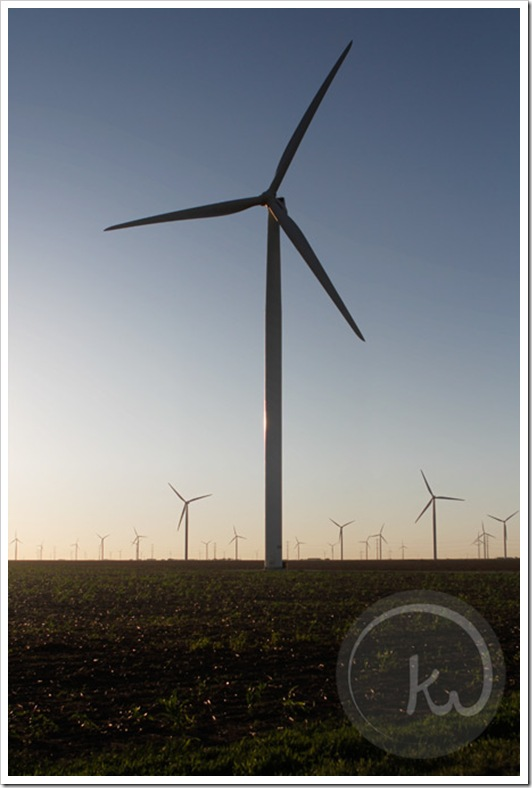 South-Texas-Windmills-San-Patricio-County