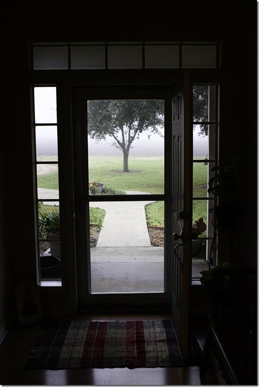 10_on_10_foggy morning_3